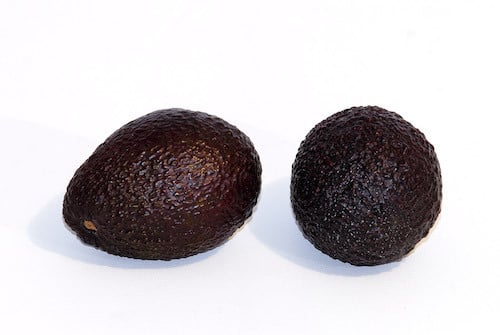 A picture of Avocado